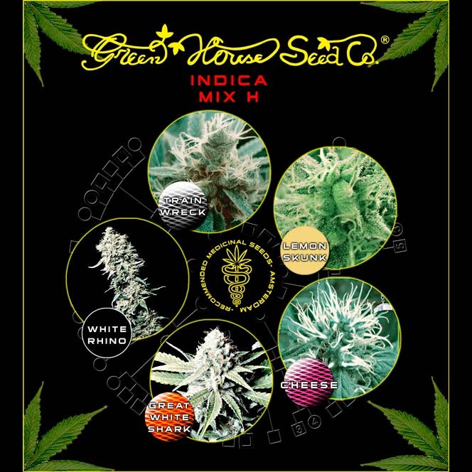 Indica Mix H - GreenHouse - Seed Banks