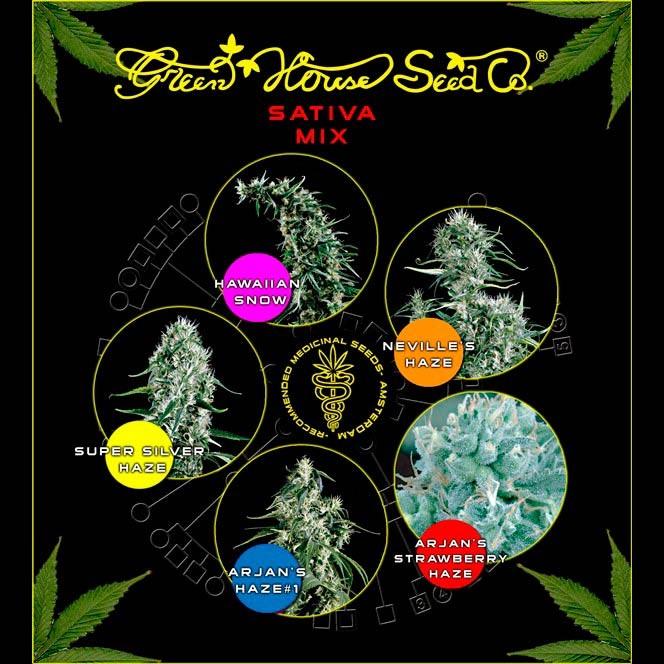 Sativa Mix - GreenHouse - Seed Banks