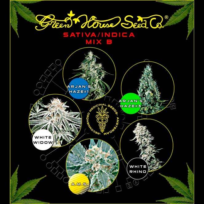 Sativa / Indica Mix B - GreenHouse - Seed Banks