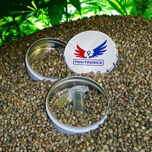 Sativa Pack - Positronics - Seed Banks