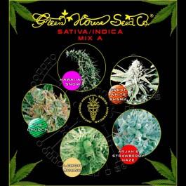 Sativa / Indica Mix A - Samsara Seeds - GreenHouse