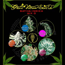 Mix - Sativa/Indica D - Samsara Seeds - GreenHouse