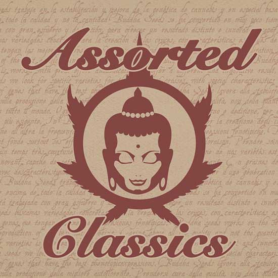 ASSORTED CLASSICS - Buddha Seeds - Seed Banks