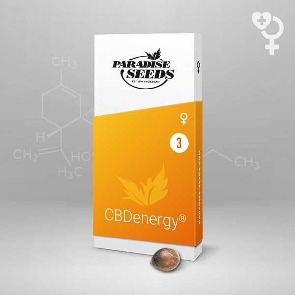 CBDenergy - Paradise Seeds - Seed Banks