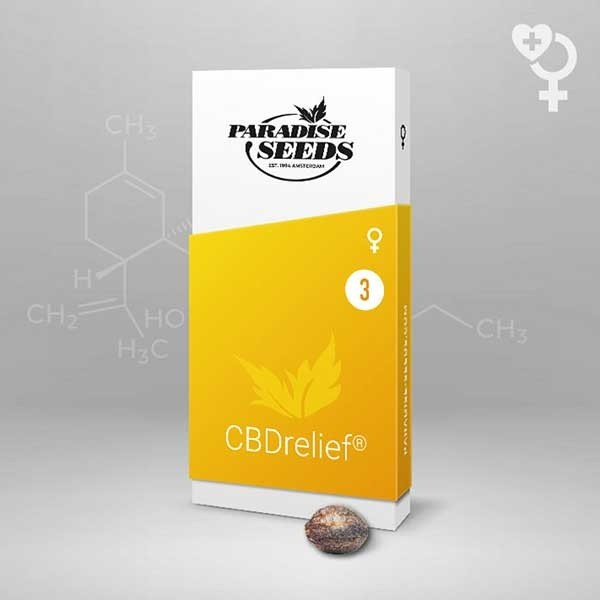 CBDrelief - Paradise Seeds - Seed Banks