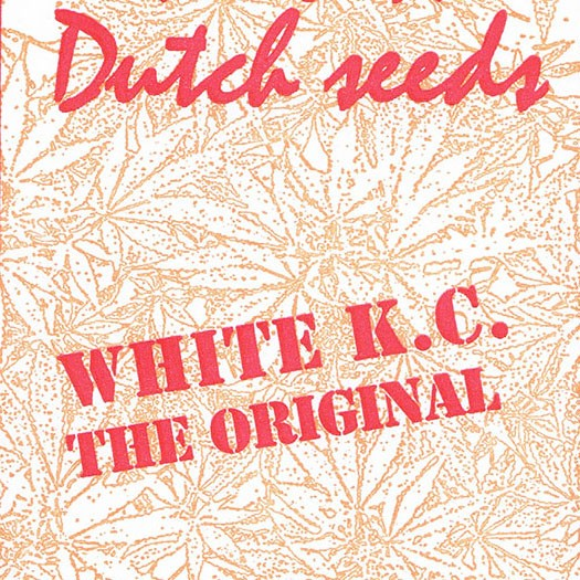 White K.C. - 5 seeds - KC Brains - Seed Banks