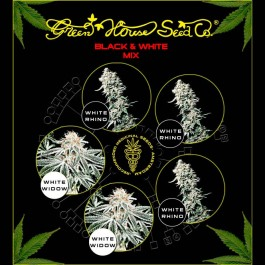Black & White Mix  - Samsara Seeds - GreenHouse