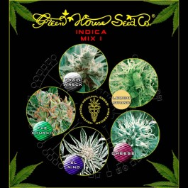 Indica Mix I  - Samsara Seeds - GreenHouse