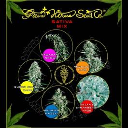 Sativa Mix - Samsara Seeds - GreenHouse