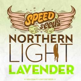 NORTHERN LIGHT X LAVENDER - Samsara Seeds - Speed Seeds