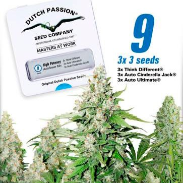 High Potency Autoflower Mix - Dutch Passion - Seed Banks