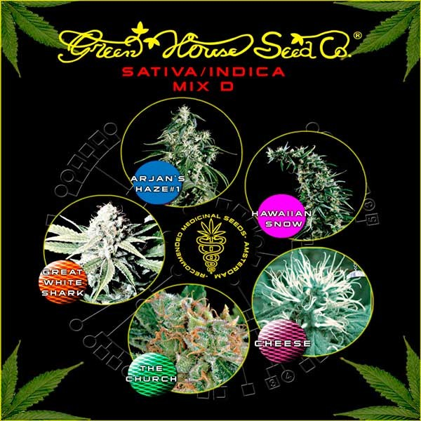 Sativa / Indica Mix D - GreenHouse - Seed Banks