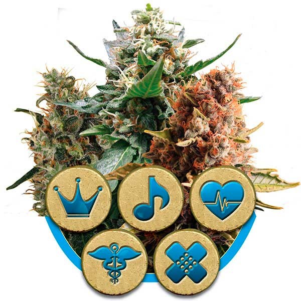 Medical Mix - Royal Queen Seeds - Seed Banks