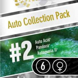 Auto Collection pack #2 - Samsara Seeds - Paradise Seeds