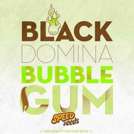BLACK DOMINA X BUBBLE GUM - Samsara Seeds - Speed Seeds