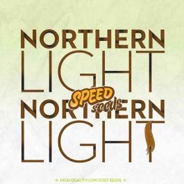 NORTHERN LIGHT X NORTHERN LIGHT - Samsara Seeds - Speed Seeds