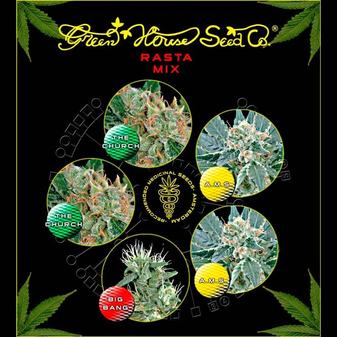Rasta Mix  - GreenHouse - Seed Banks