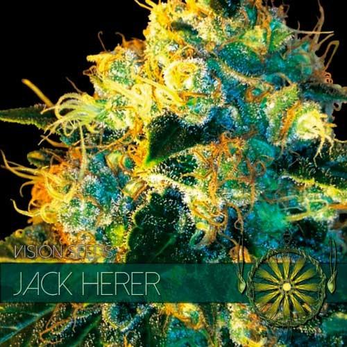 JACK HERER - Vision Seeds - Seed Banks