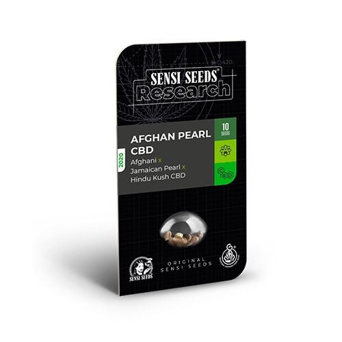 Afghan Pearl CBD Auto (Afghani x Jamaican Pearl x Hindu Kush CBD) - Sensi Seeds - Seed Banks