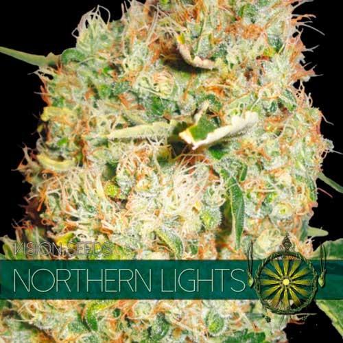 NORTHERN LIGHTS - Vision Seeds - Seed Banks