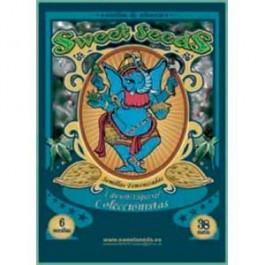 EDICION ESPECIAL COLECCIONISTA #1 - Samsara Seeds - Sweet Seeds