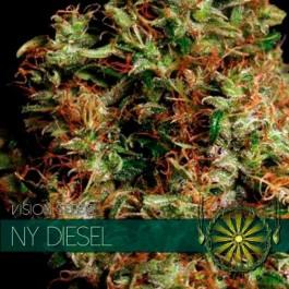 NY DIESEL - Samsara Seeds - Vision Seeds