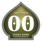 Female Collection - 00 Seeds - Seed Banks