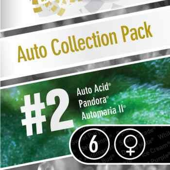 Auto Collection pack #2 - Paradise Seeds - Seed Banks