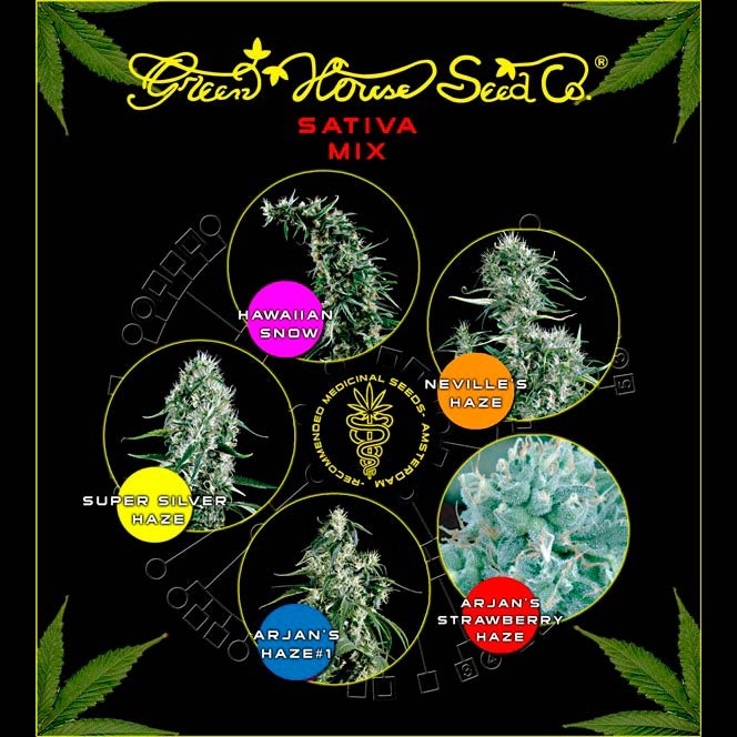 Sativa Mix - GreenHouse - Seed Banks