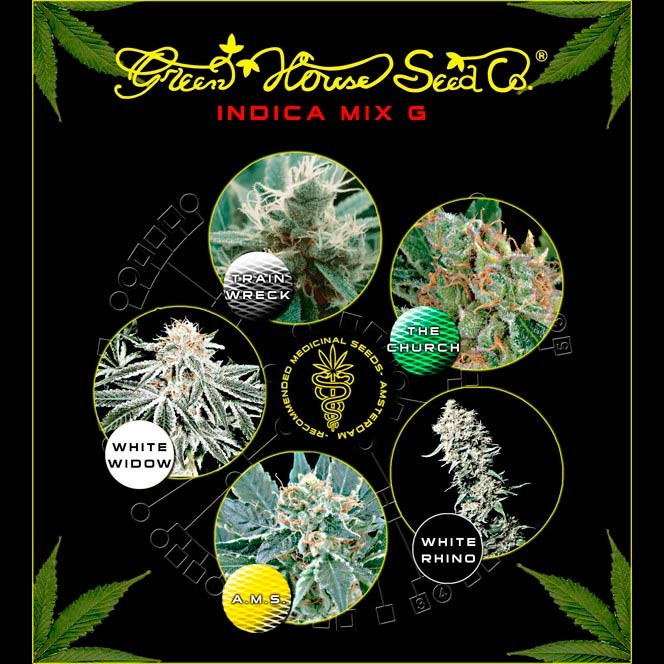 Indica Mix G - GreenHouse - Seed Banks