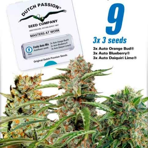 Fruity Autoflower Mix - Dutch Passion - Seed Banks