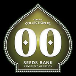 Female Collection - Samsara Seeds - 00 Seeds