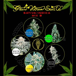 Sativa / Indica Mix B - Samsara Seeds - GreenHouse