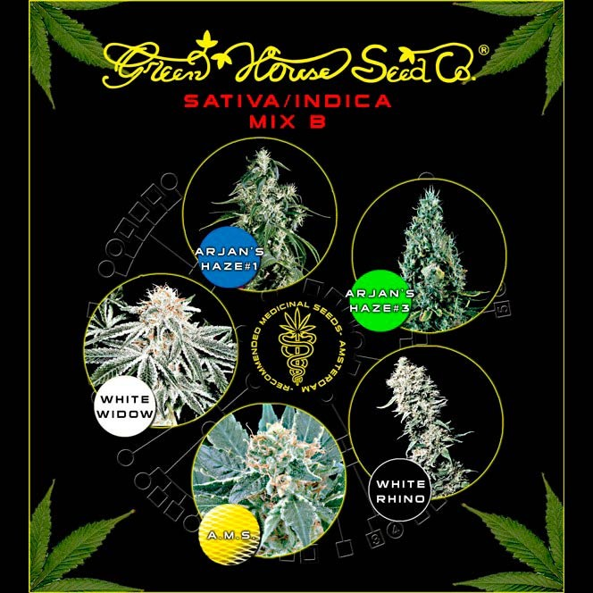 Sativa / Indica Mix B - GreenHouse - Seed Banks